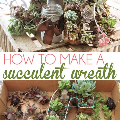 Sucker for succulents- a DIY Succulent Wreath Tutorial