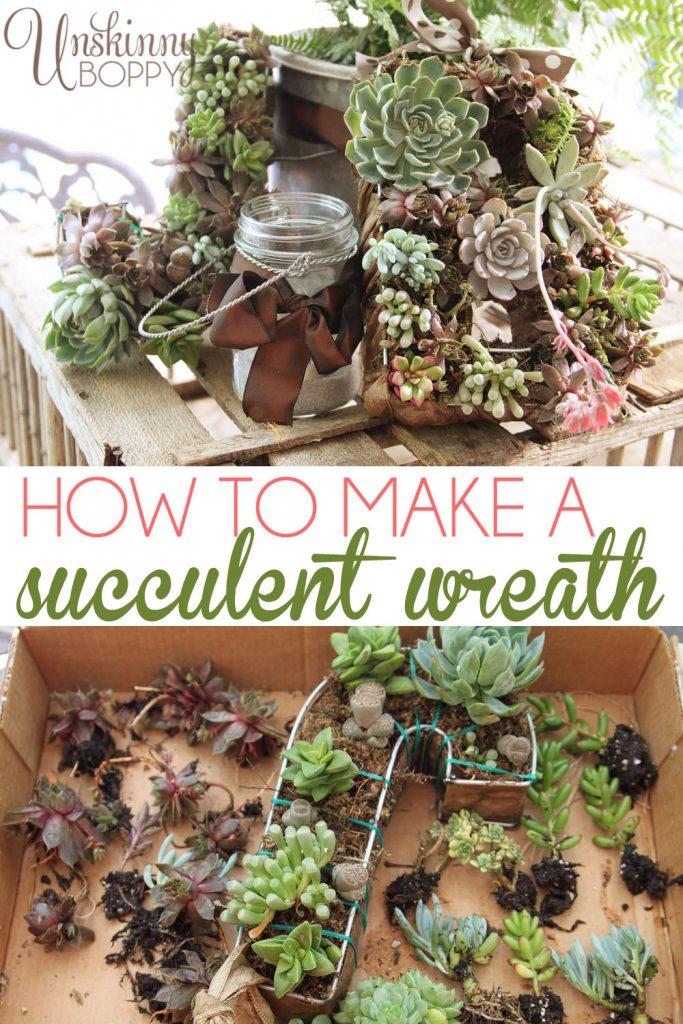 Sucker For Succulents A Diy Succulent Wreath Tutorial