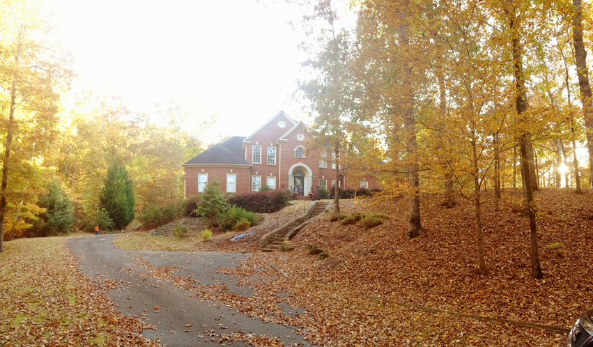 fall leaves on driveway