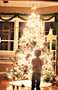 Little boy in front of tree from pinterest