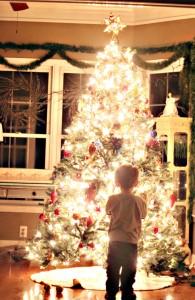 Little boy in front of tree from pinterest