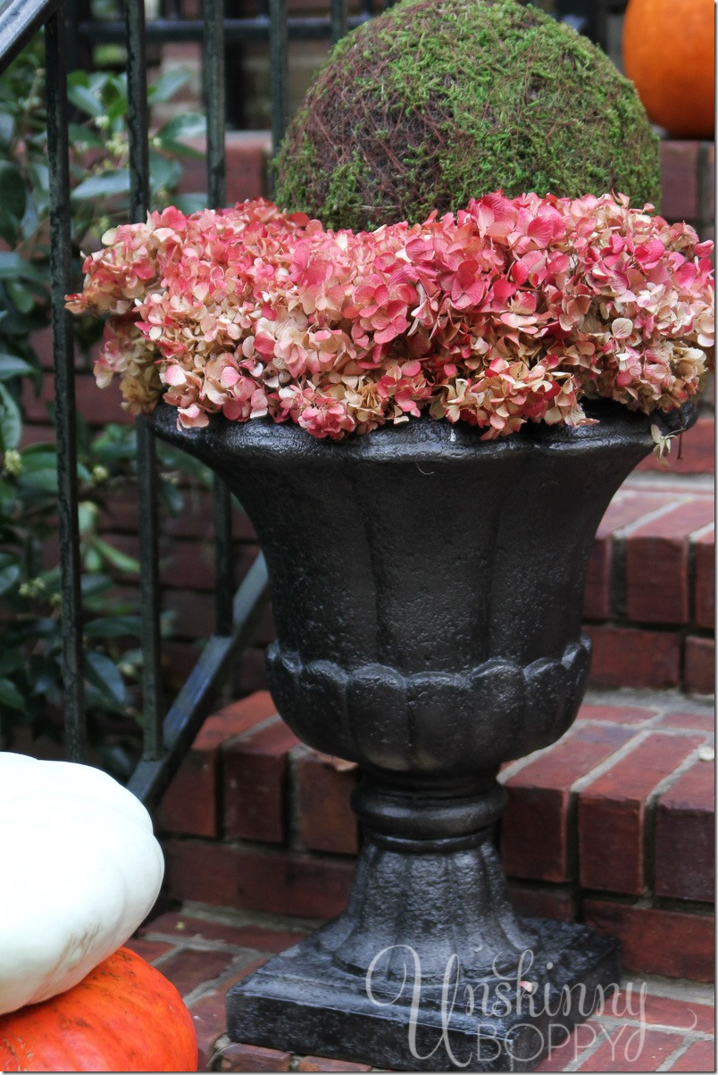 Outdoor Plant Stands Porches