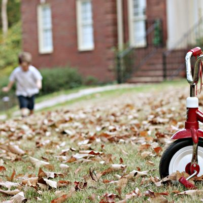 Thankful at Home: Fall Traditions