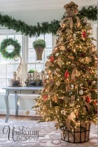 Balsam-Fir-Christmas-tree_thumb.jpg