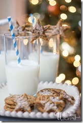 Milk and Cookies for Santa-2, 5 Perfect Christmas Cookies, Beth Bryan, unskinnyboppy, Mohawk Homescapes, holiday cookies