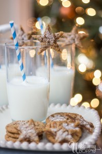 Milk and Cookies for Santa-2