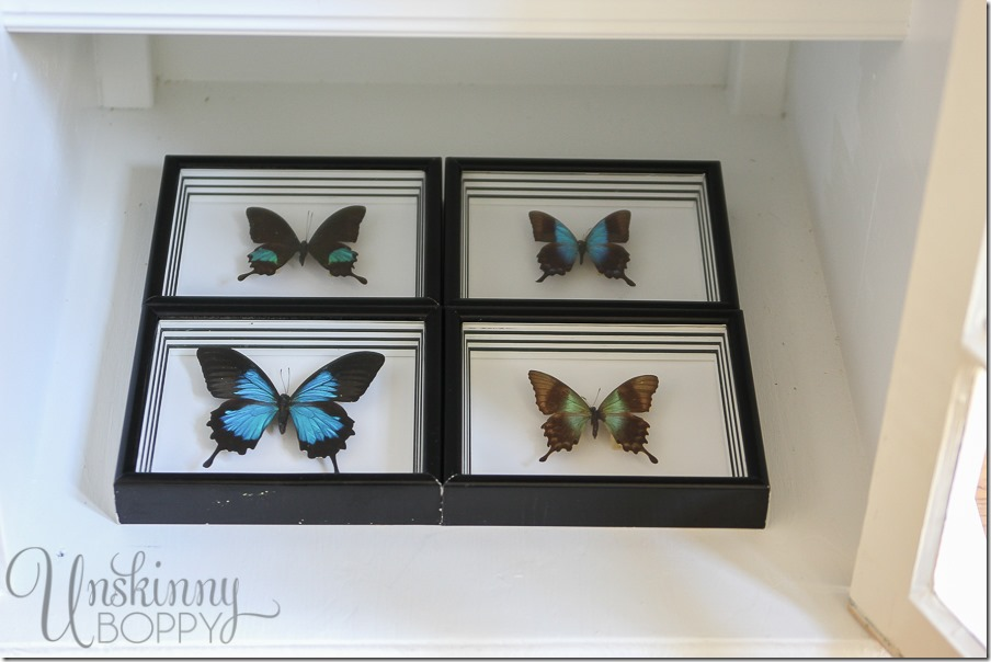 These special framed butterflies are gifts from my husband and this end table cabinet is the perfect place to display them.