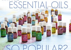 Why are essential oils so popular today