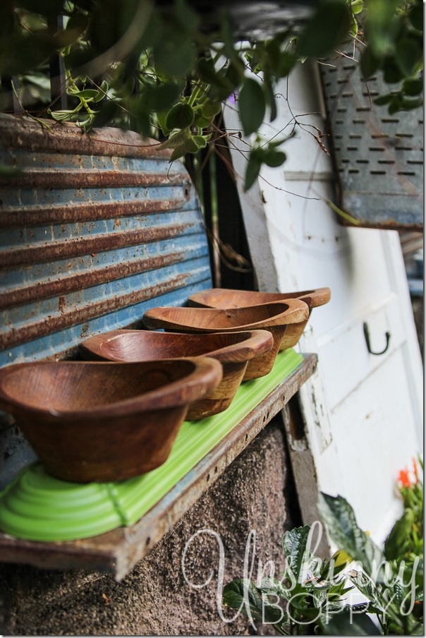 DIY wooden bowls planters with succulents and creeping jenny-1