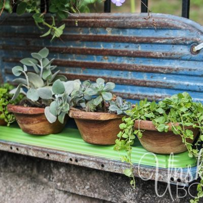 DIY Thrift Store Wooden Bowl Planters