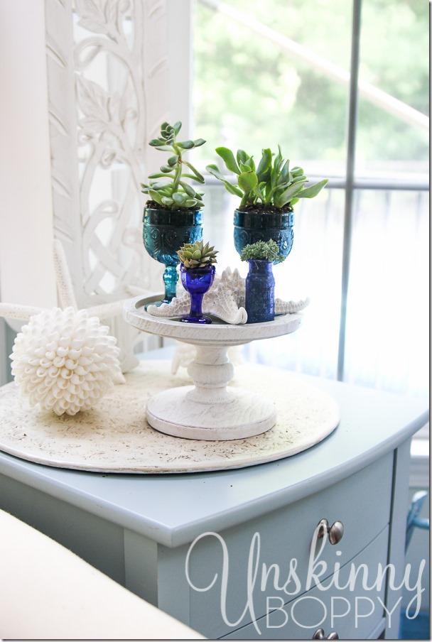 Succulents and seashells-3
