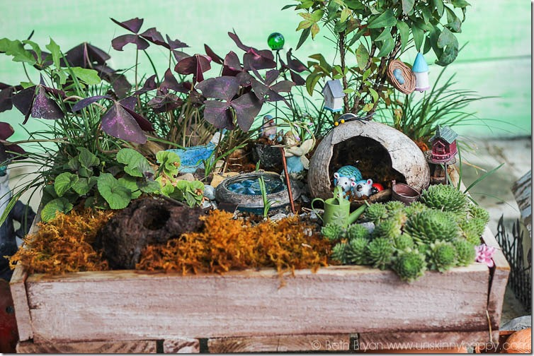 Amazing Fairy Garden Ideas-10