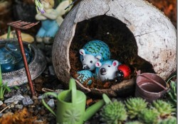 Amazing Fairy Garden Ideas15_thumb.jpg