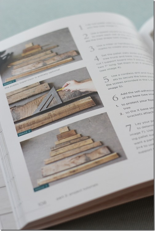 DIY Pallet Projects Book-3