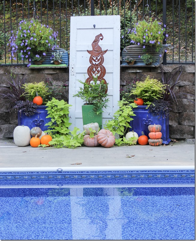 Fun decorating idea for Fall - pumpkins scattered around containers