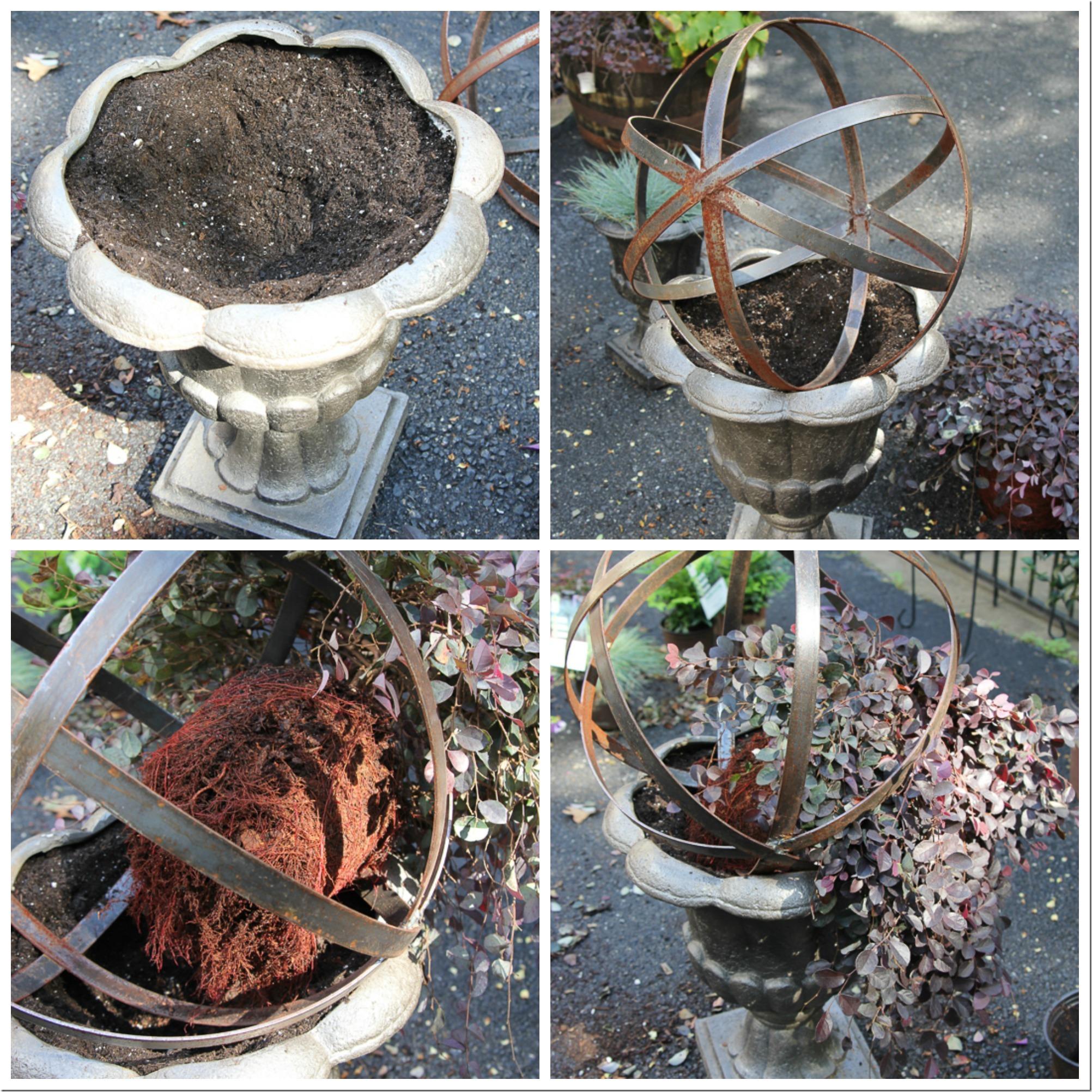 Planting inside a metal orb