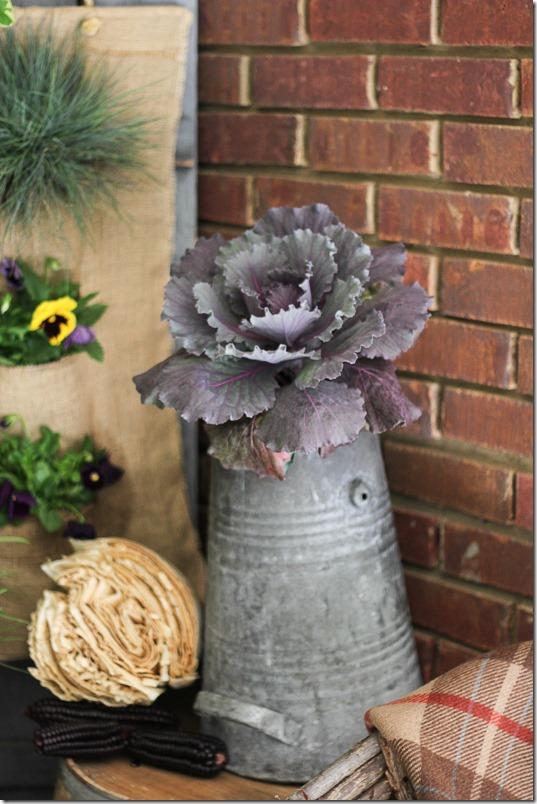 Purple Kale in a galvanized bucket. Perfect fall porch decor!