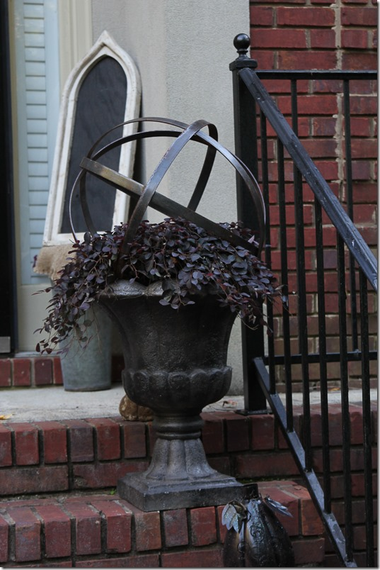 Southern Living Plant Collection Best Plants for Fall- Purple Pixie Weeping Loropetalum