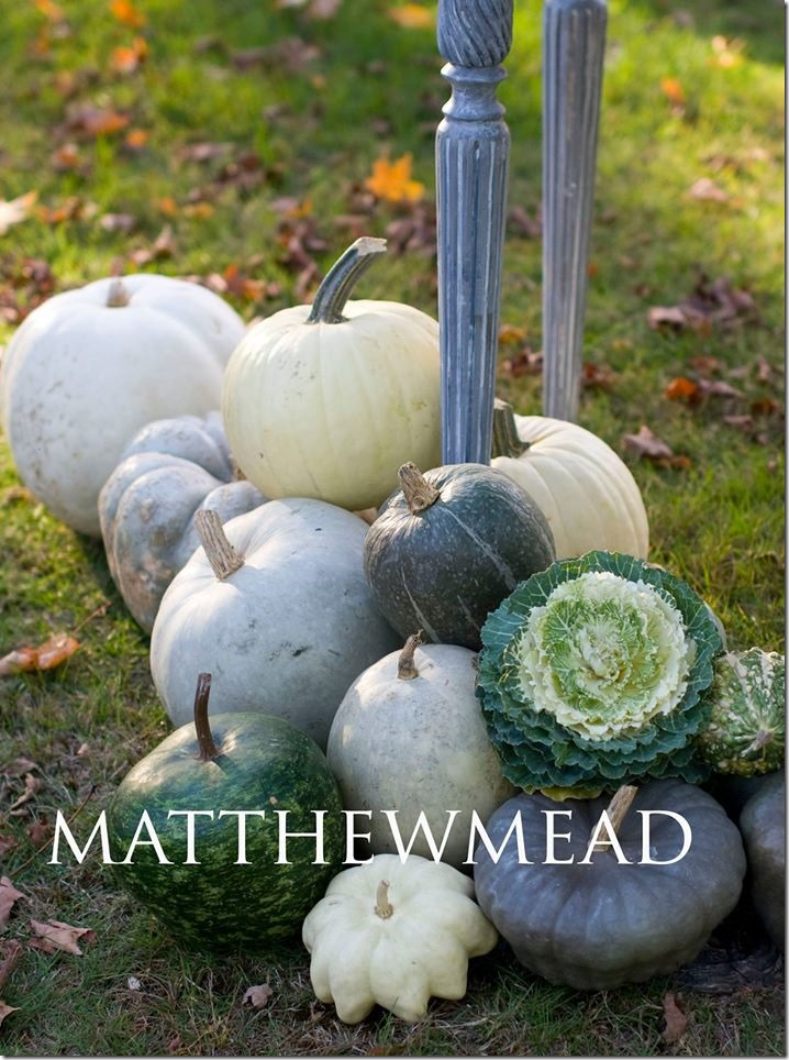 monochromatic pumpkins by Matthew Mead