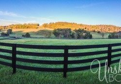 tennessee-farmland-1.jpg