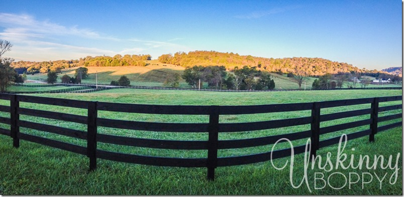 tennessee farmland-1