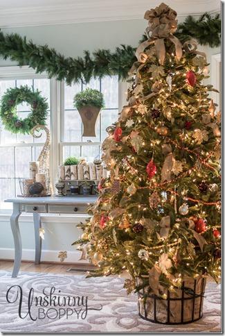 Balsam-Fir-Christmas-tree_thumb1