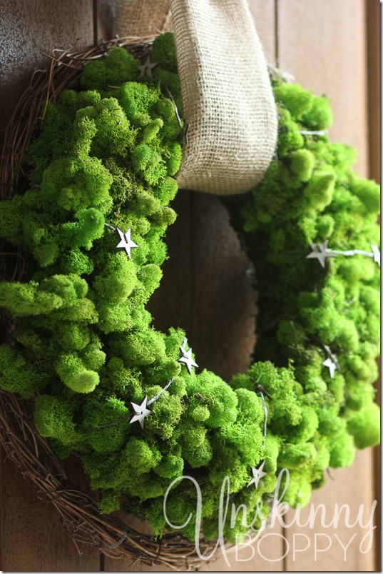 DIY Reindeer Moss Wreath-12