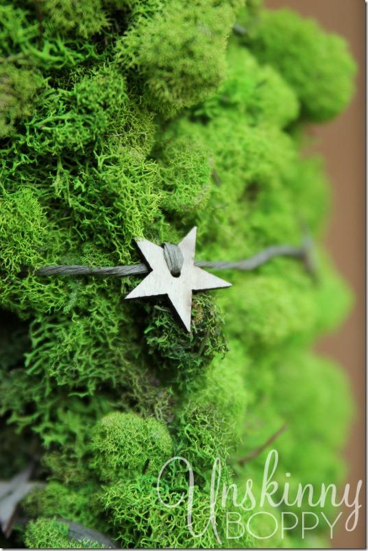 DIY Reindeer Moss Wreath-16