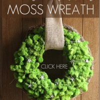 How-to-make-DIY-Reindeer-Moss-Wreath.jpg