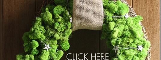 How to: DIY Reindeer Moss Christmas Wreath