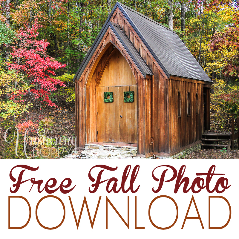 free fall photo download