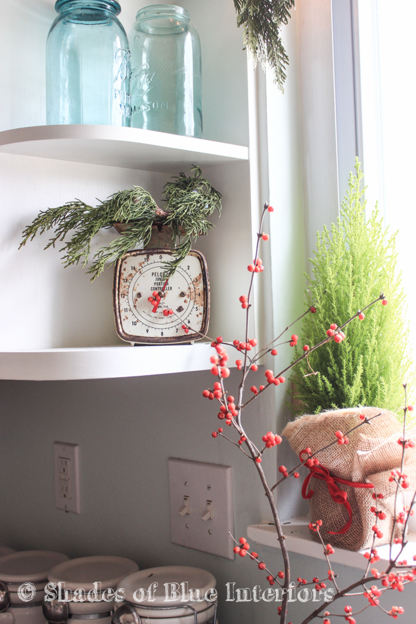 Greenery for Christmas decor