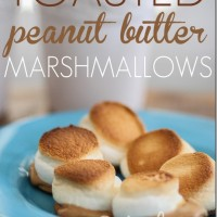 Peanut butter marshmallow on a cracker