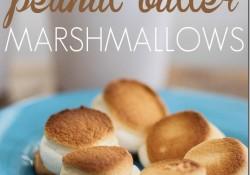 Toasted-peanut-butter-marshmallows-on-Ritz_thumb.jpg