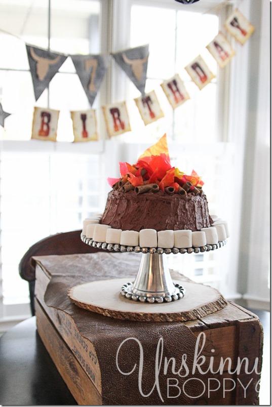 Lone ranger birthday party-10