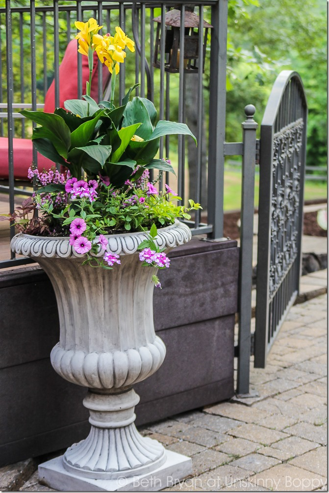 Pretty planters in the courtyard-13