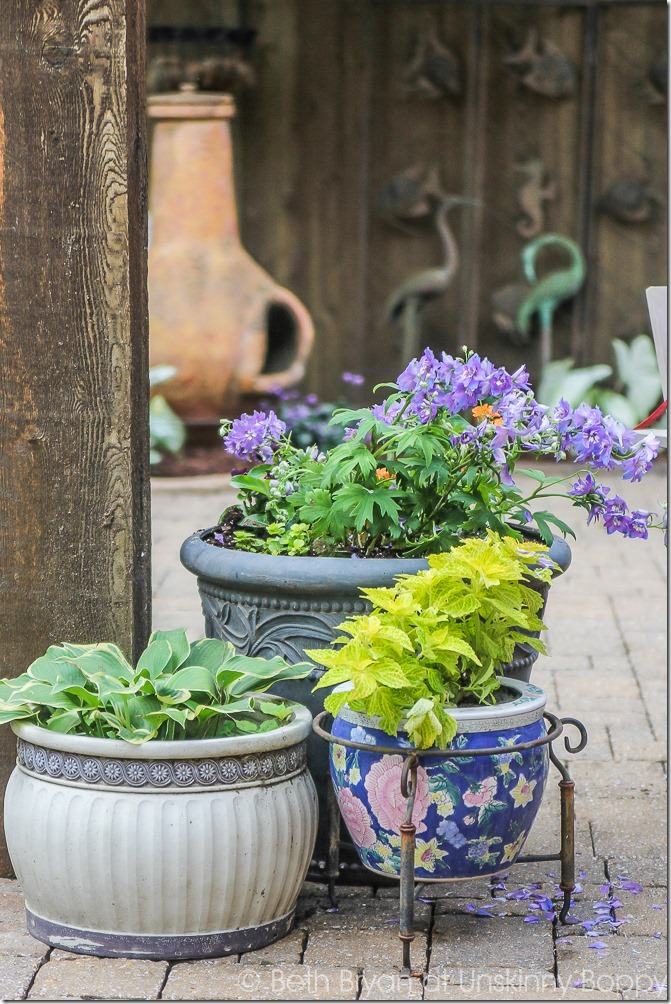 Pretty planters in the courtyard-15
