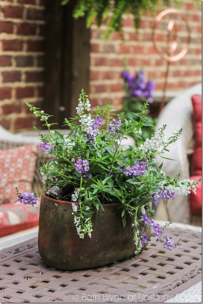 Pretty planters in the courtyard-16