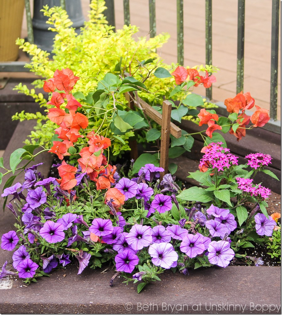 Pretty planters in the courtyard-18