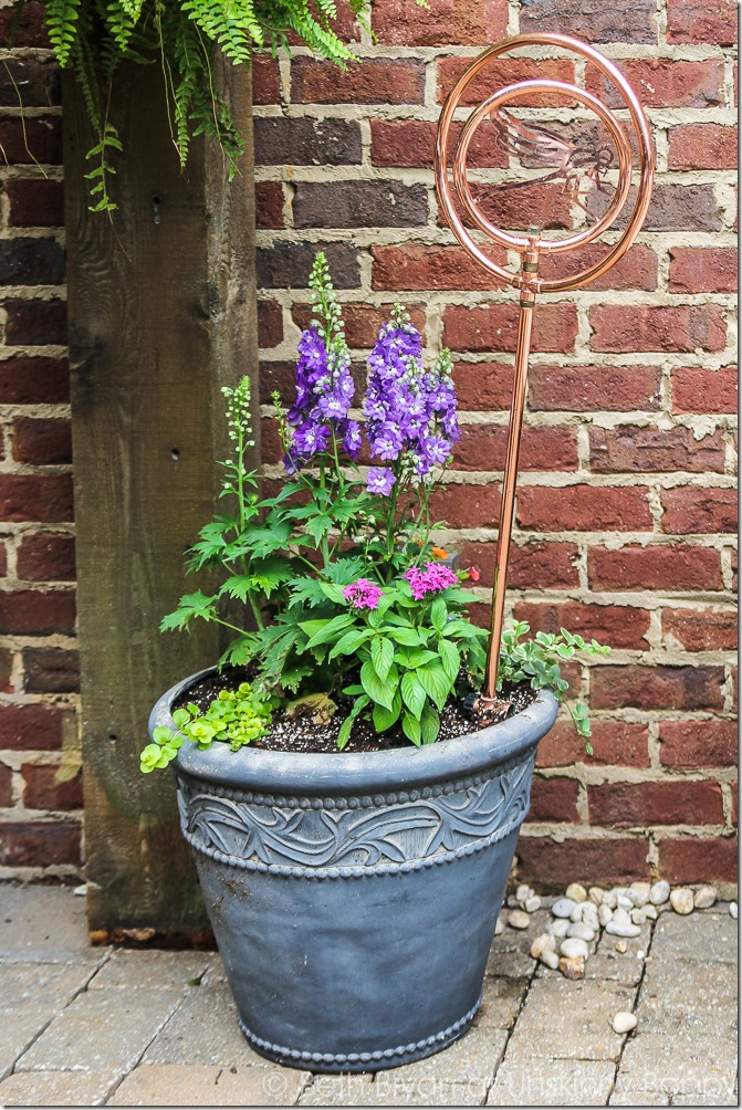 Pretty planters in the courtyard-9