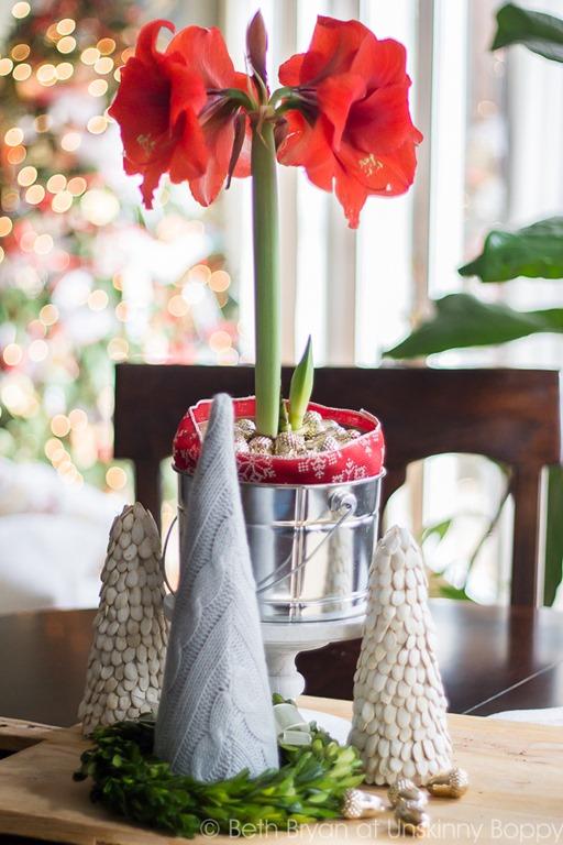 Amarylis-Christmas-Decorating-Ideas