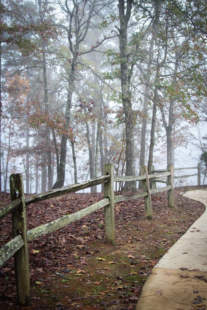Split rail fence in the fog
