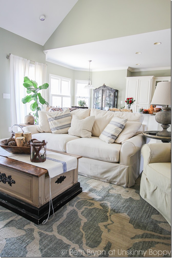Pretty living room with white couch