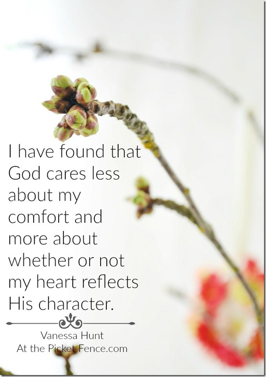 Comfort-and-character
