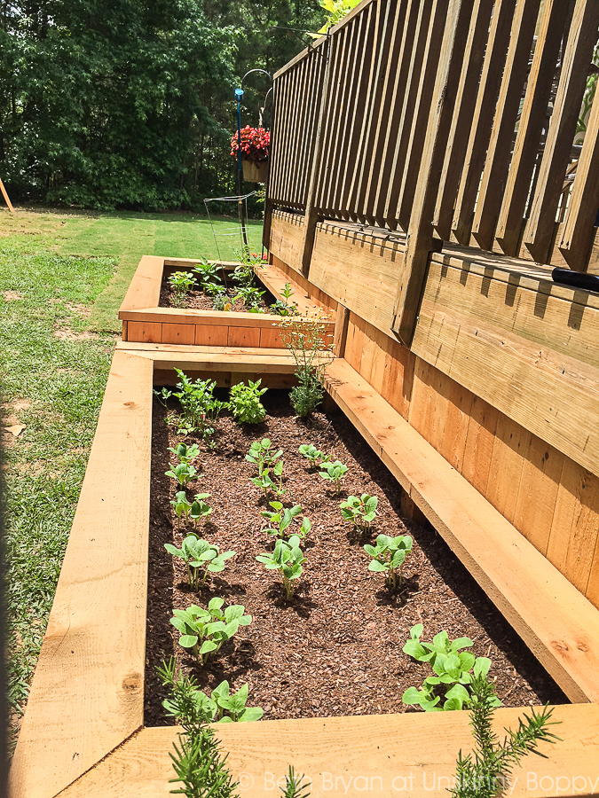 Backyard landscaping with raised garden beds-9