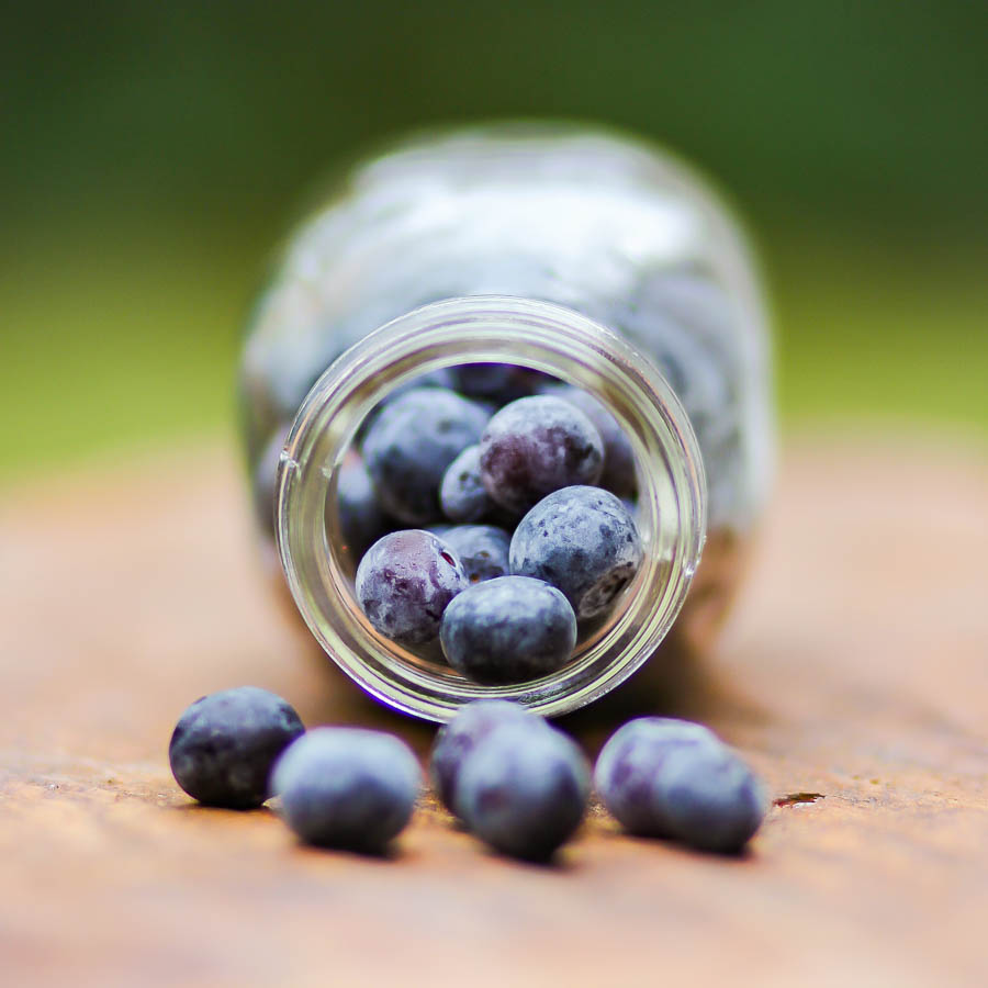 Blackberries and blueberries (2 of 4)
