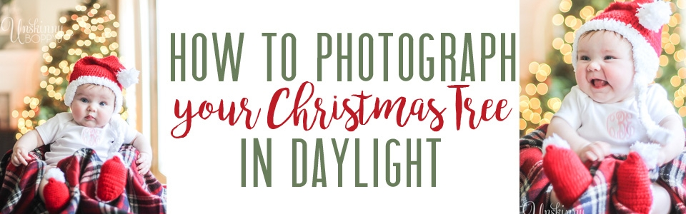 how-to-photograph-christmas-tree-in-daylight