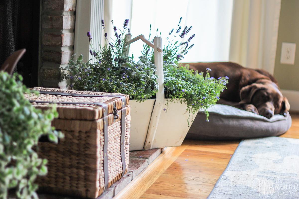Pretty Spring home decor ideas-1