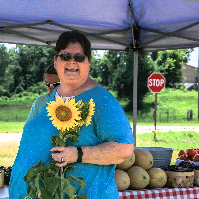 The Sunflower Field - Unskinny Boppy