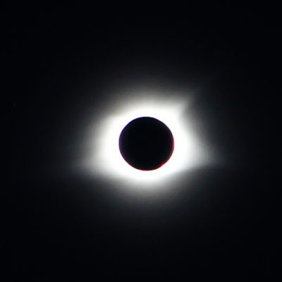 Our Great American Eclipse Recap